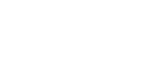 magis-big-logo-min